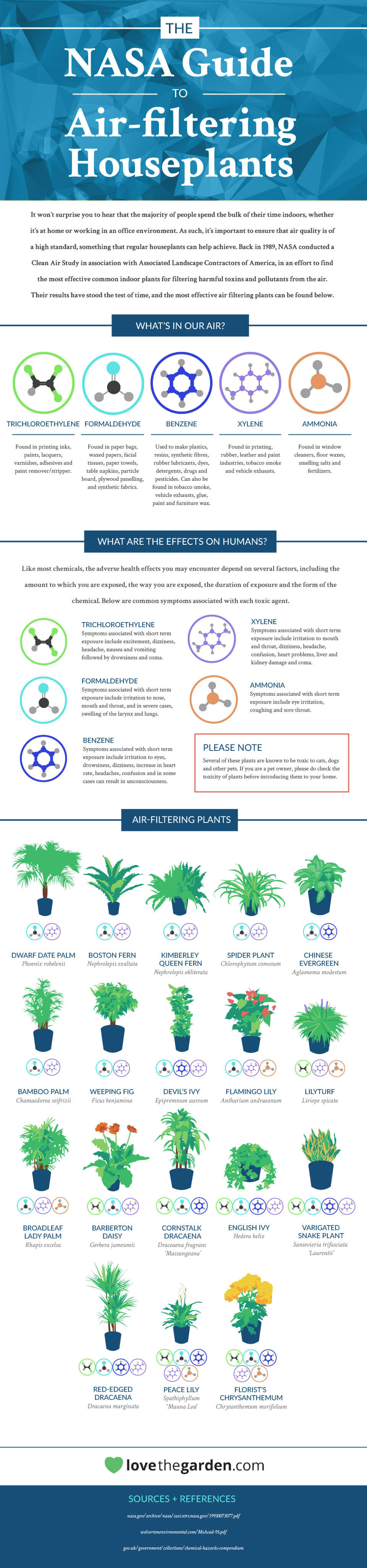 PLANTS THAT WILL CHANGE YOUR LIFE
